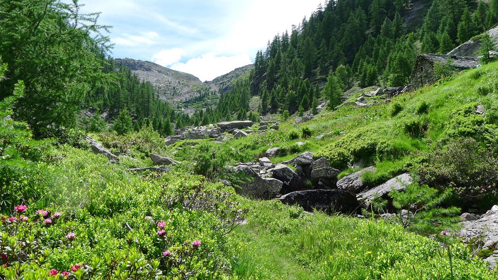Einladende Berglandschaft